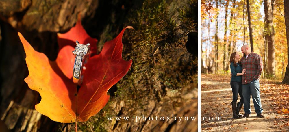 diamond ring fall leaf