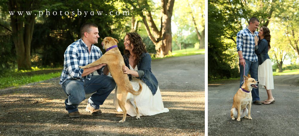 funny dog engagement photos