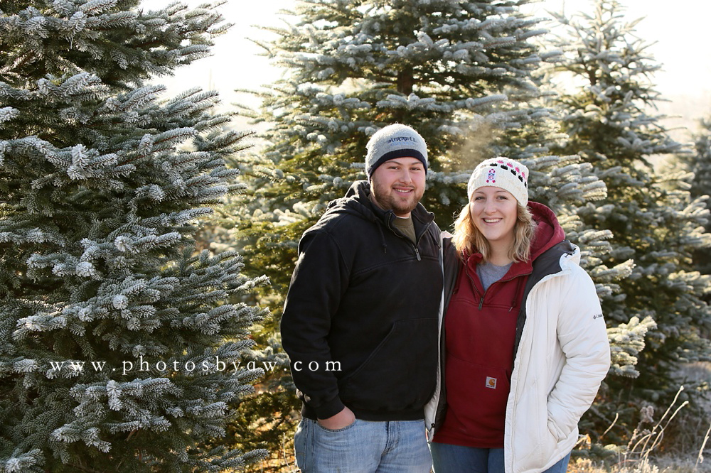 couple photos in a christmas tree field