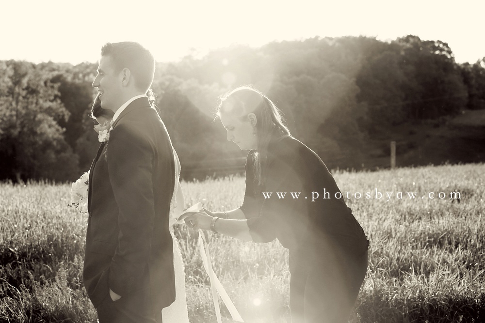 wedding photo assistant
