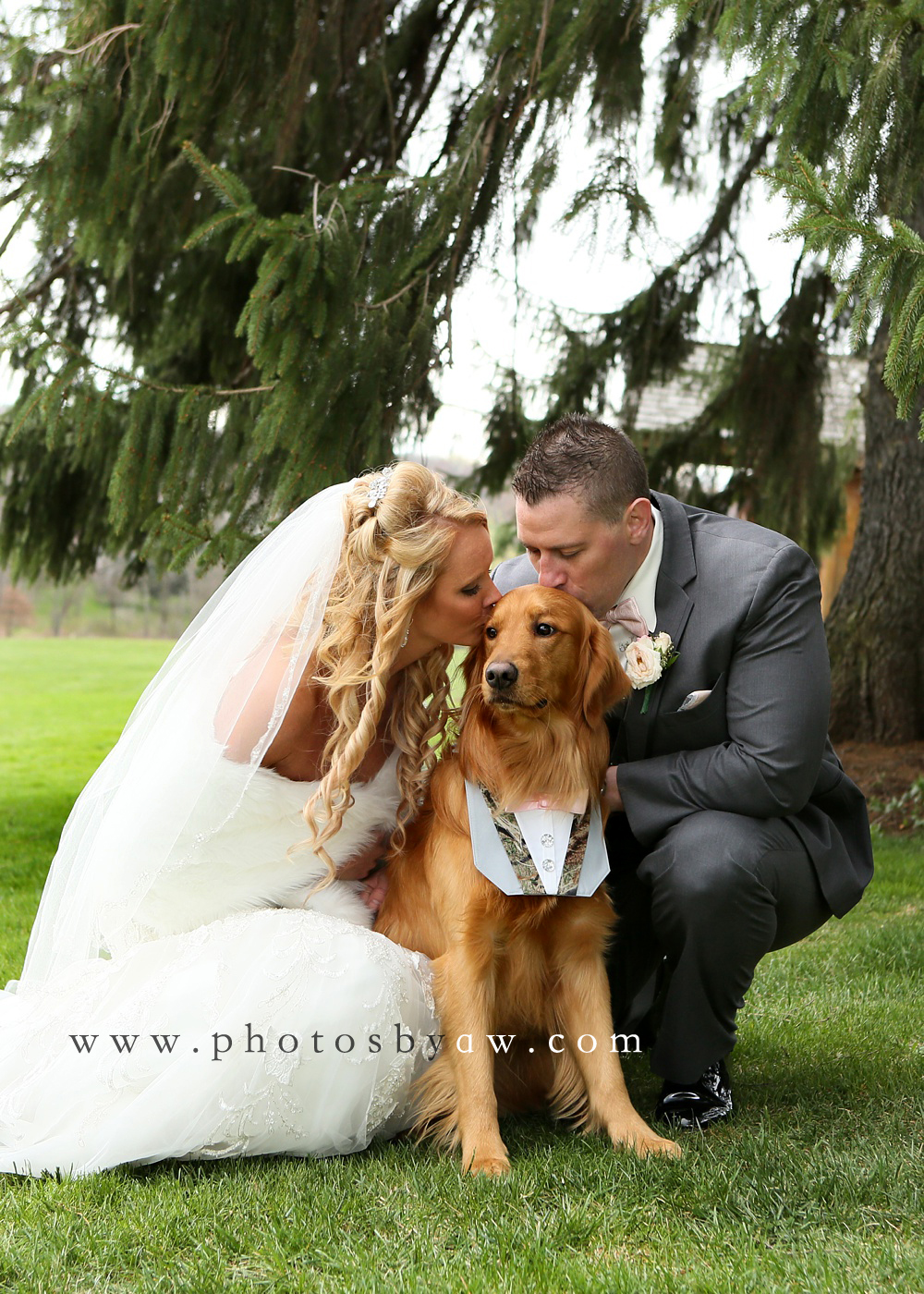 outdoor wedding Archives - Photos by Amanda Wilson