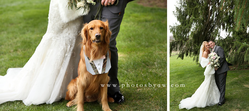 bride-and-groom-with-their-dog
