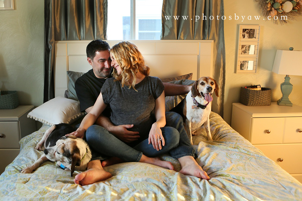lifestyle-maternity-photos-with-dogs