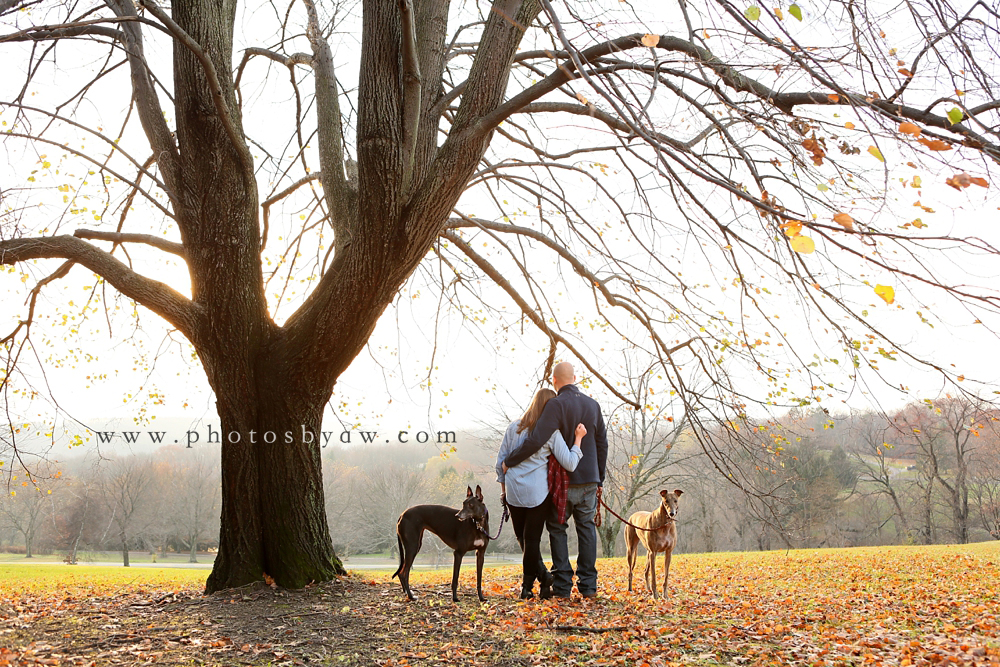 pittsburgh_engagement_session_with_greyhounds