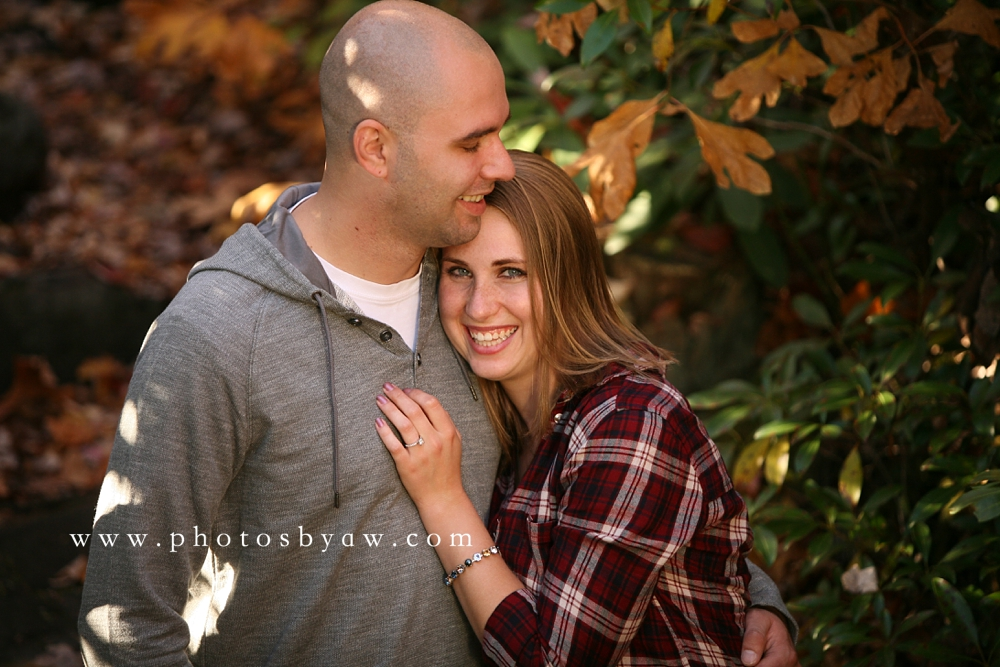 fall_laurel_highlands_engagement