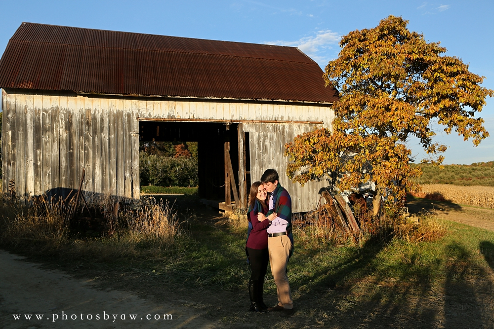 Shenot Farm engagement session