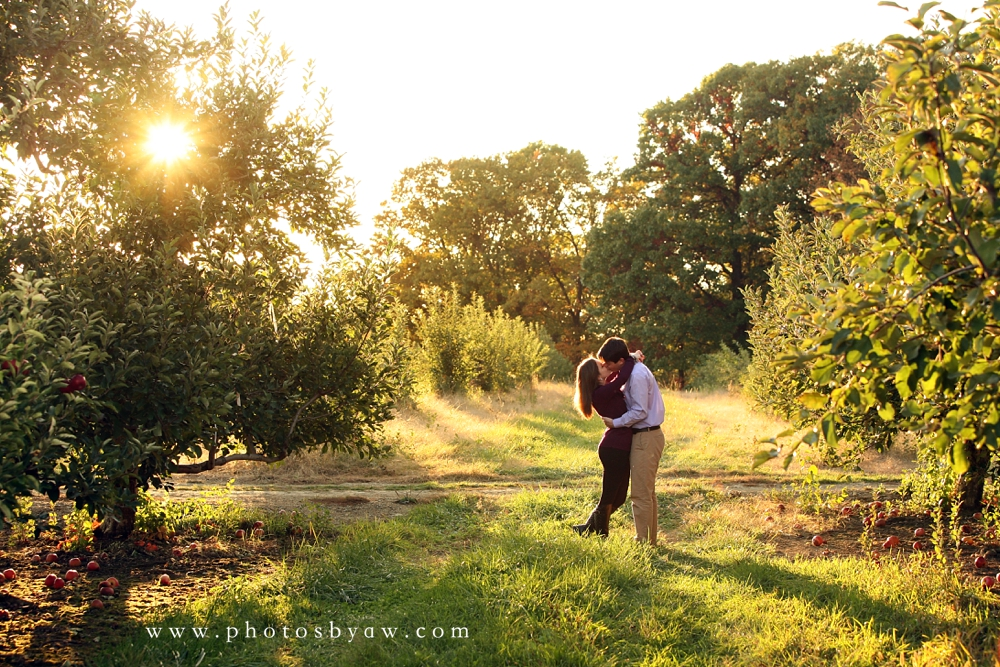 apple orchard engagement